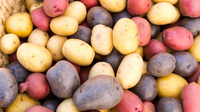 Bunte Ofenkartoffeln