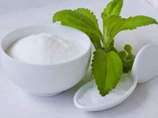 Stevia Pulver und Stevia Pflanze